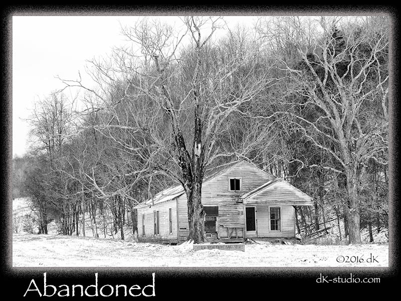 AbandonedHouseTN012316-1091