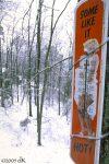MarilynMonroe3243_winter0037K